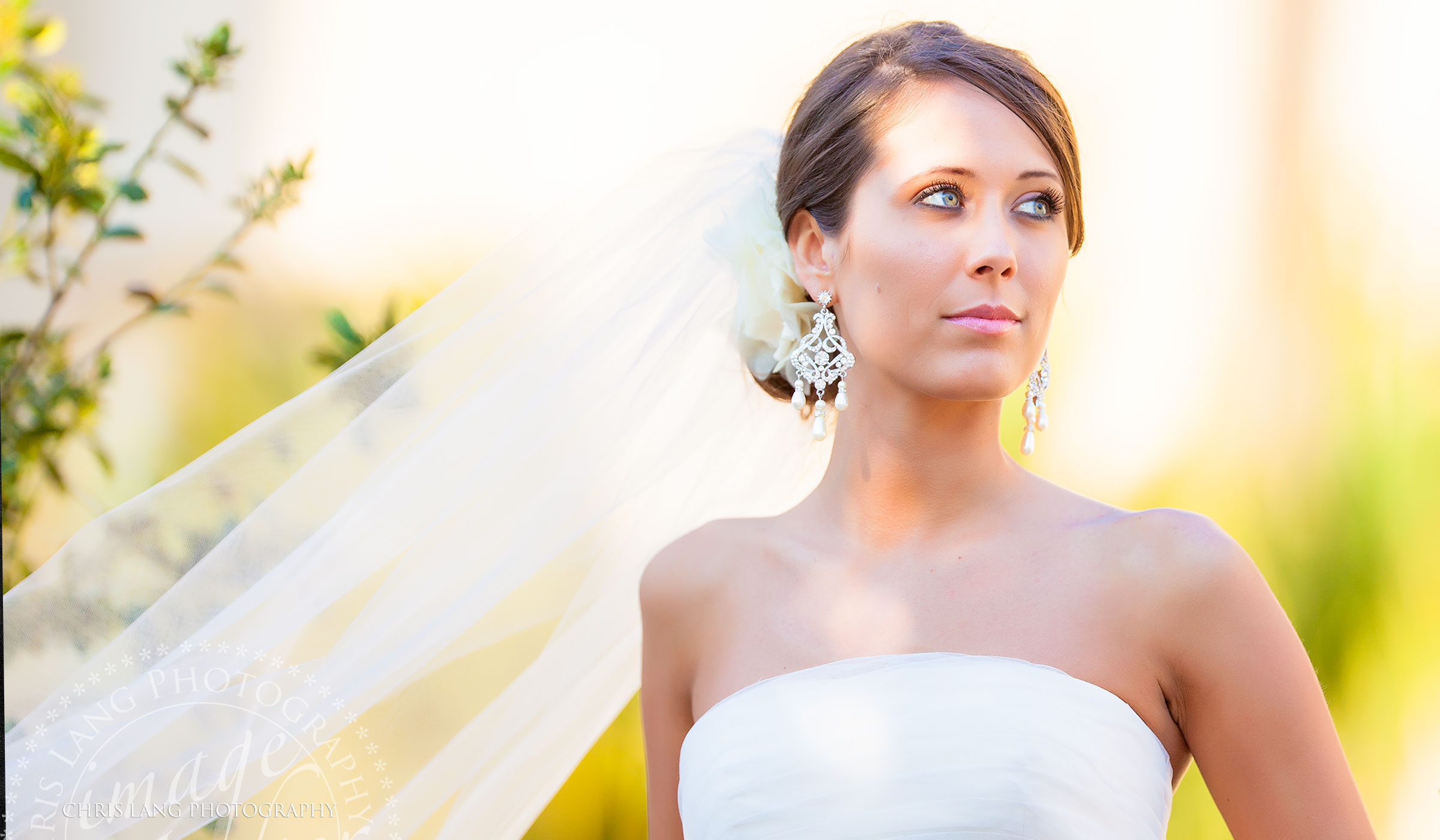 Bridal picture with a bride under her wedding vail. Bridal pictrure ideas. Wilmington NC Photographer