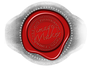 Stacks Image ppp1175718_n107206_n72_n8